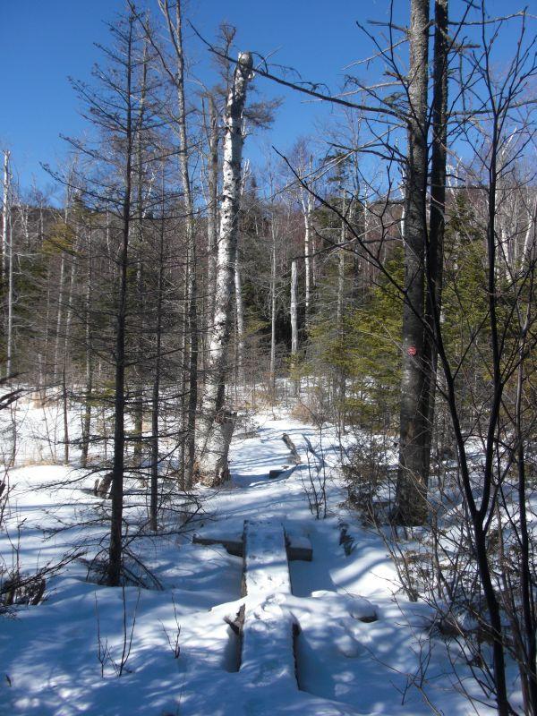 Hurricane Mountain Trail
