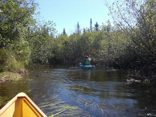 Chubb River Narrow passage