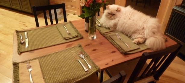 Foster Thanksgiving